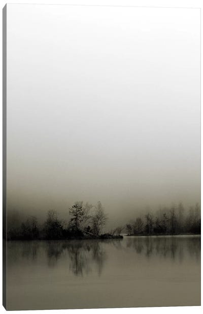 Diffusion Canvas Art Print