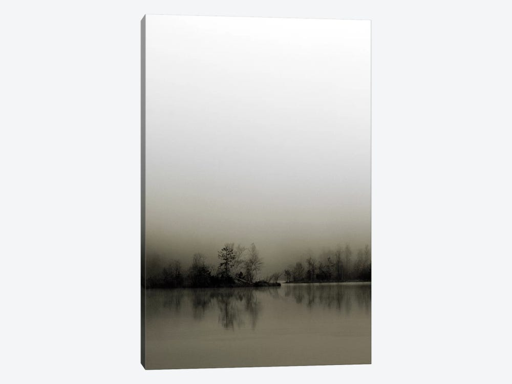 Diffusion by Henrik Spranz 1-piece Canvas Artwork