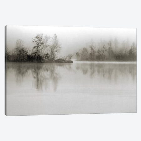 Dissolution Canvas Print #OXM1500} by Henrik Spranz Canvas Print