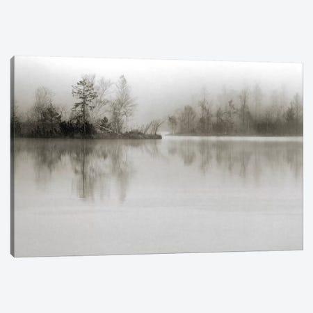 Dissolution Canvas Print #OXM1500} by Henrik Spranz Canvas Print