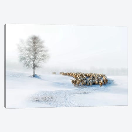 In Snow Canvas Print #OXM1518} by Hua Zhu Canvas Artwork