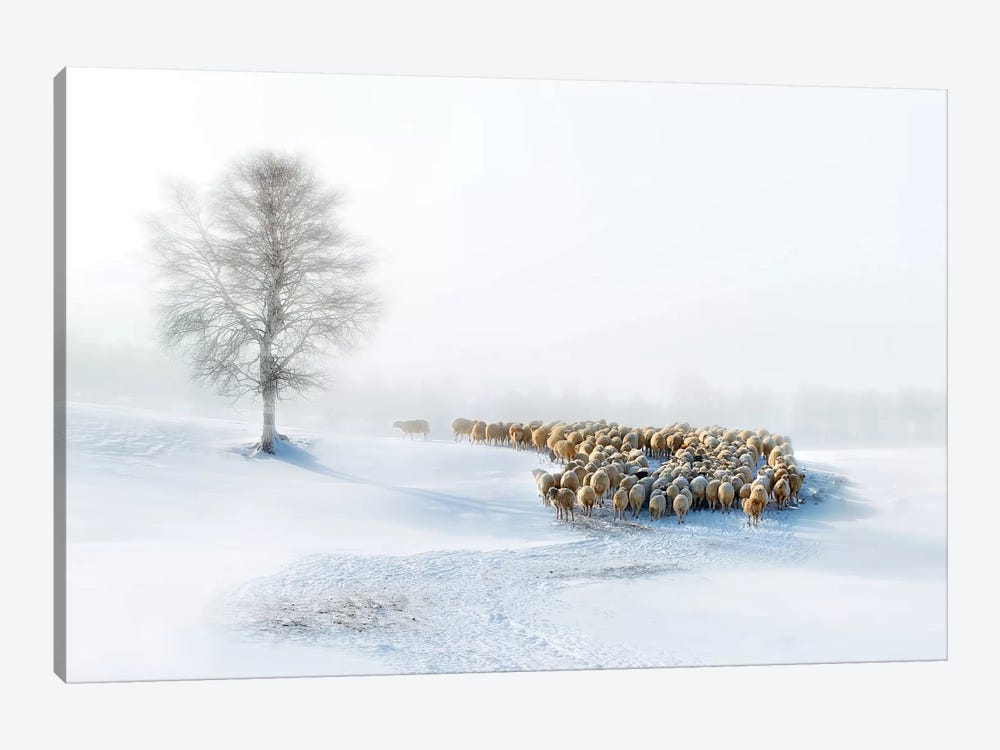 In Snow by Hua Zhu 1-piece Canvas Artwork