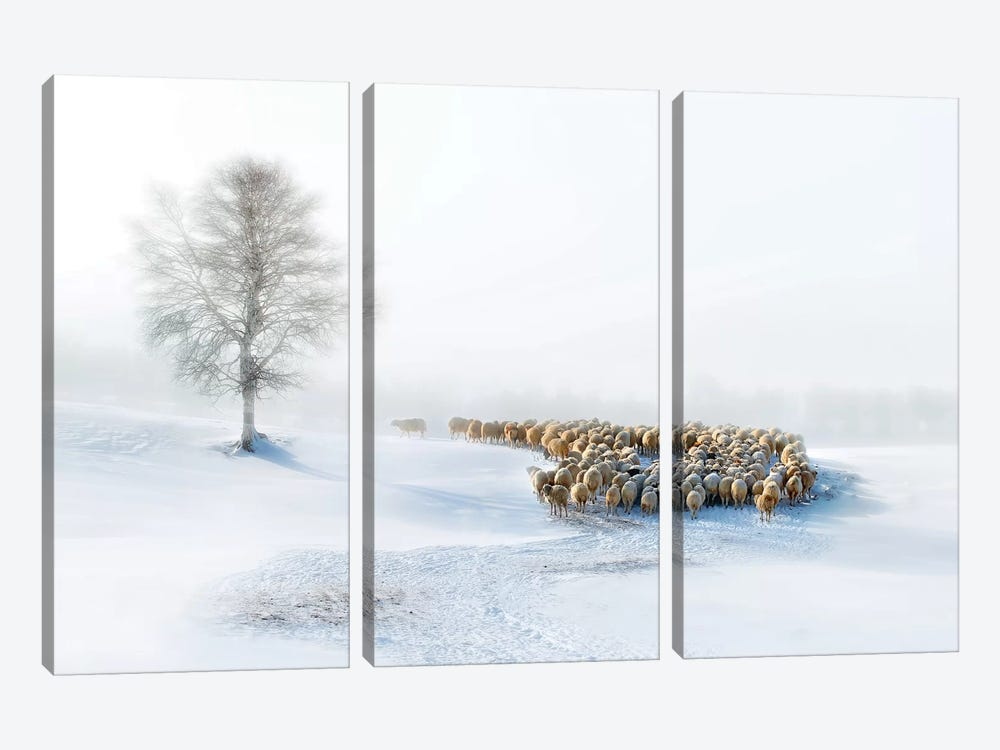 In Snow by Hua Zhu 3-piece Canvas Art