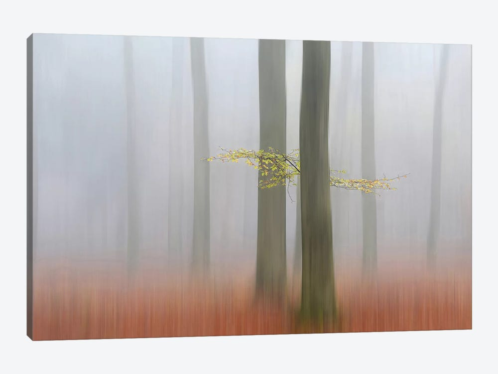 Autumn Morning by Huib Limberg 1-piece Art Print