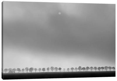 Polder Landscape Canvas Art Print