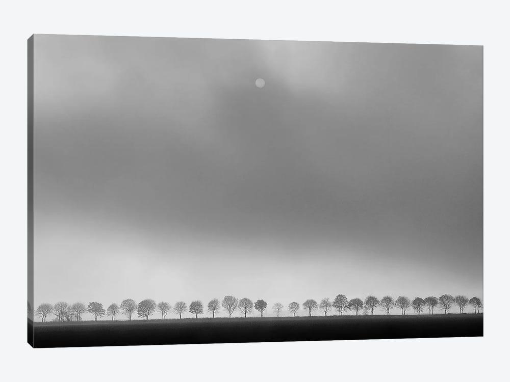 Polder Landscape by Huib Limberg 1-piece Canvas Art Print