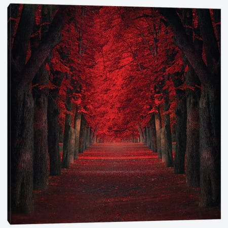 Endless Passion Canvas Print #OXM1531} by Ildiko Neer Canvas Artwork