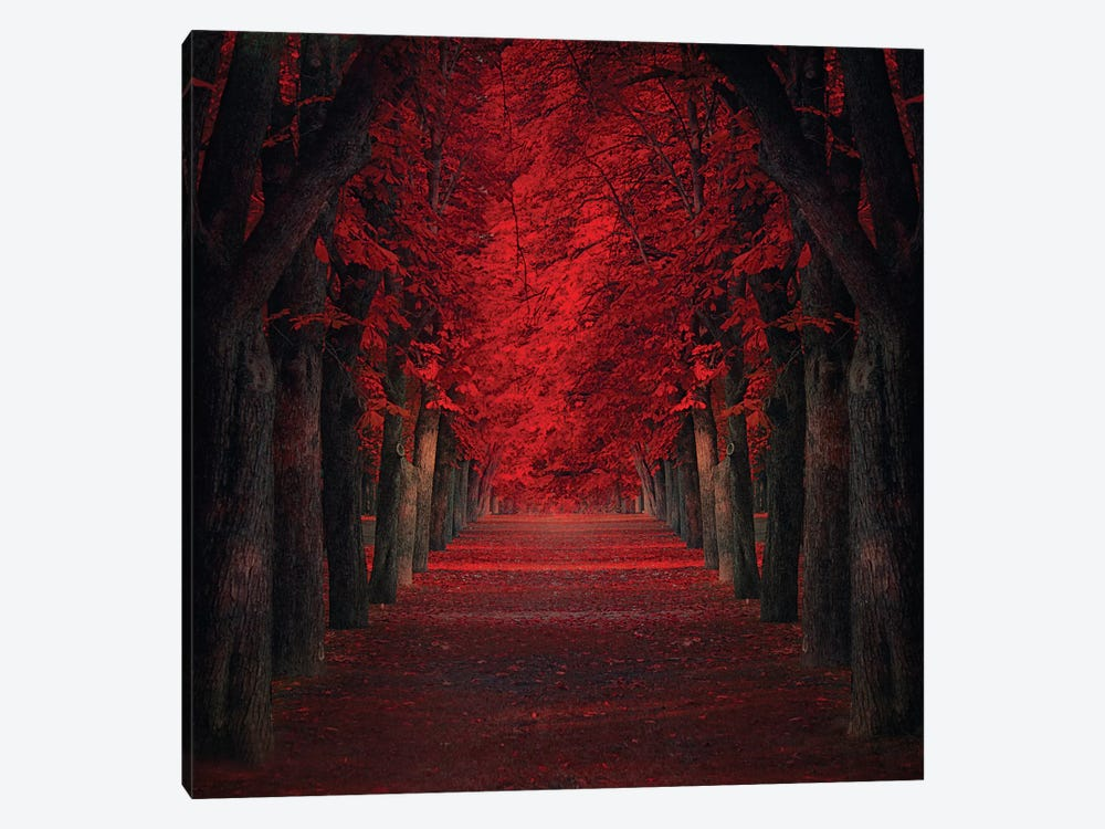 Endless Passion by Ildiko Neer 1-piece Art Print