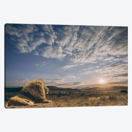 The King And His Kingdom Canvas Print #OXM1544} by Jackson Carvalho Canvas Art