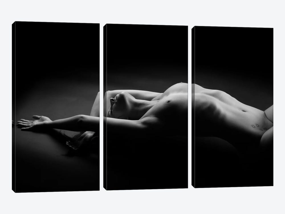 Woman by Jan Blasko 3-piece Canvas Art Print