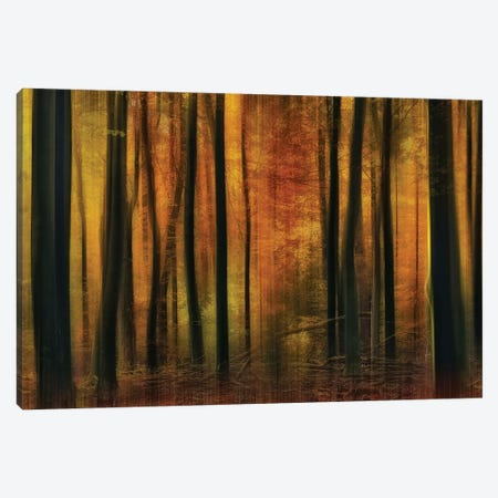 Autumn Falls Canvas Print #OXM1563} by Jan Paul Kraaij Canvas Print