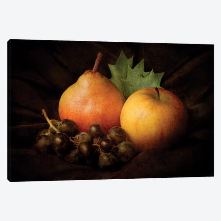 Nature Morte III Canvas Print #OXM1582} by Jerome Zakka Bajjani Canvas Print