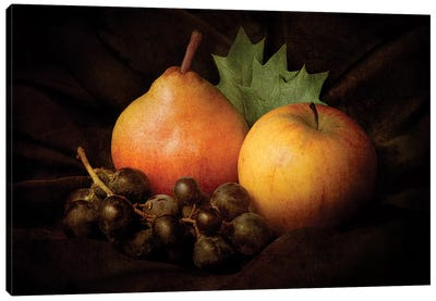Nature Morte III Canvas Art Print