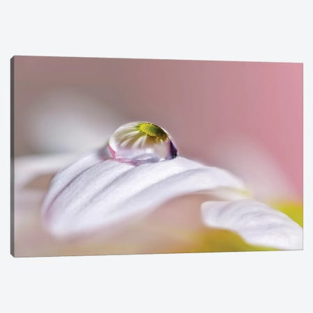 Magical Drop Canvas Print #OXM1583} by Jesús M. García Canvas Art Print