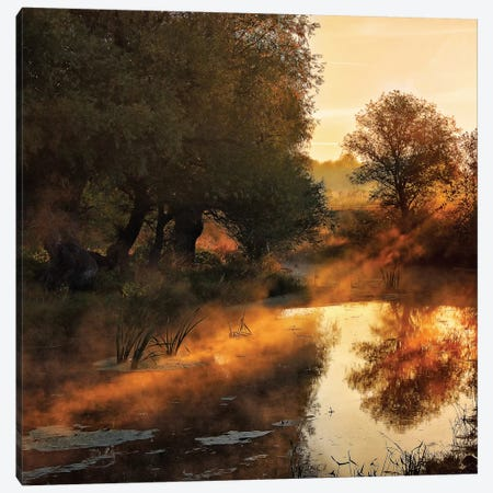 When Nature Paints With Light Canvas Print #OXM1590} by Jimbi Canvas Wall Art