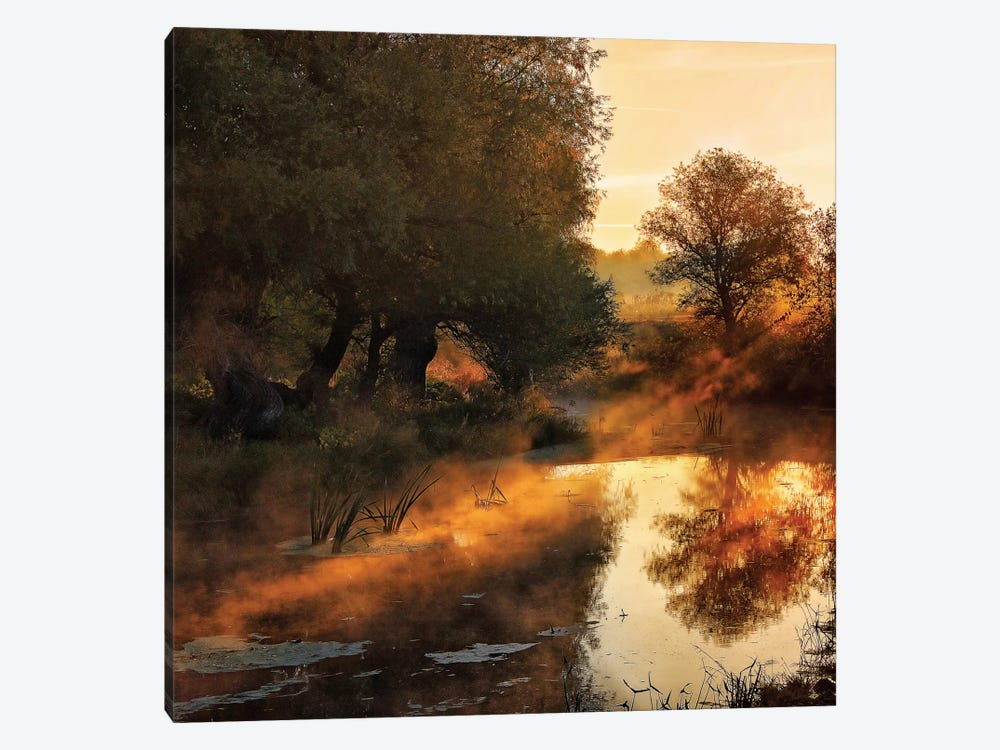 When Nature Paints With Light by Jimbi 1-piece Canvas Artwork