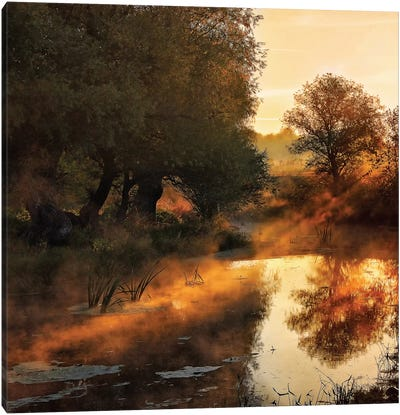 When Nature Paints With Light Canvas Art Print