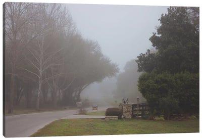 Morning Mist Canvas Art Print