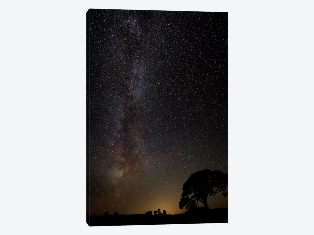 Milky Way 1-piece Canvas Art Print