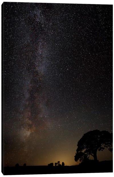 Milky Way Canvas Art Print