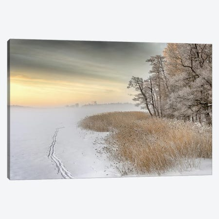 Misty Winter Morning Canvas Print #OXM1649} by Keijo Savolainen Canvas Artwork