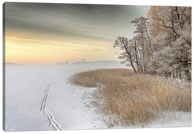 Misty Winter Morning Canvas Art Print