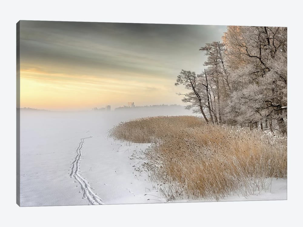 Misty Winter Morning by Keijo Savolainen 1-piece Canvas Wall Art