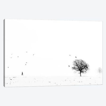 Ballade Ardennaise Canvas Print #OXM164} by Eric Drigny Canvas Artwork