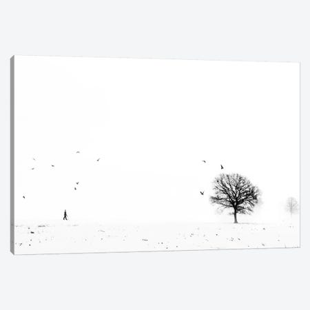Ballade Ardennaise Canvas Print #OXM164} by Eric Drigny Canvas Artwork