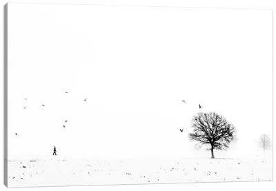 Ballade Ardennaise Canvas Art Print