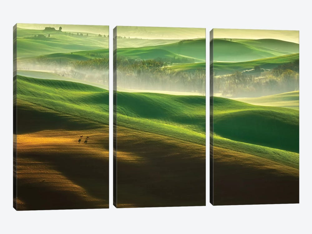 Freedom.... by Krzysztof Browko 3-piece Canvas Wall Art