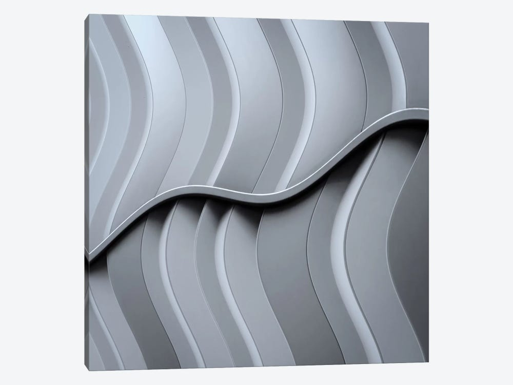 Just Form, No Function by Luc Vangindertael 1-piece Canvas Art Print