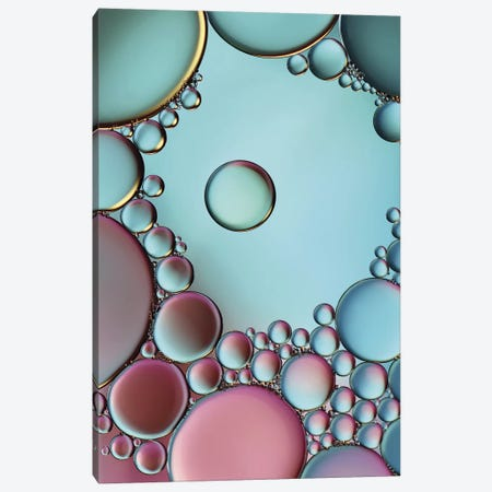 Surrounded Or Protected? Canvas Print #OXM171} by Heidi Westum Canvas Artwork