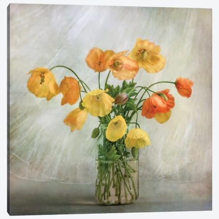 In The Window Canvas Print #OXM1726} by Mandy Disher Canvas Wall Art