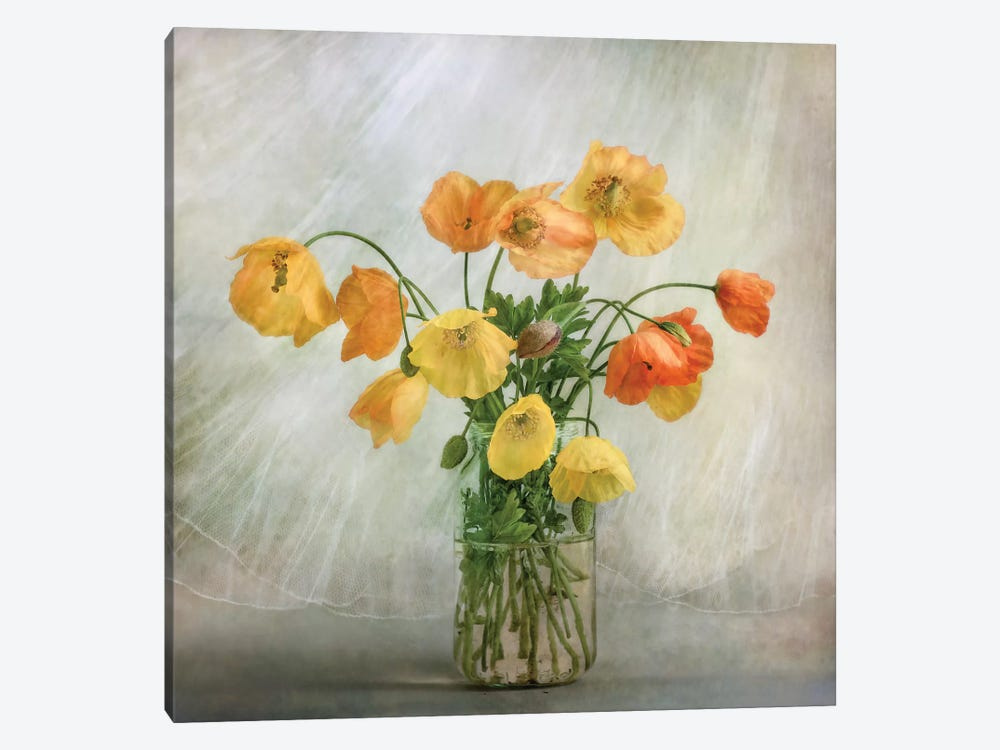 In The Window by Mandy Disher 1-piece Canvas Wall Art
