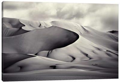 Pinza de Arakao, Desierto del Ténéré Canvas Art Print