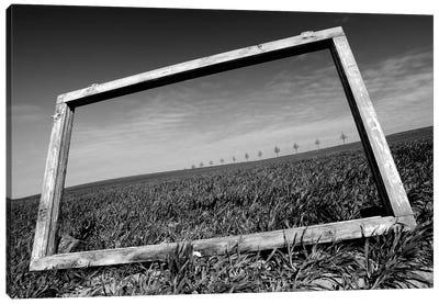A View Through The Window Canvas Art Print