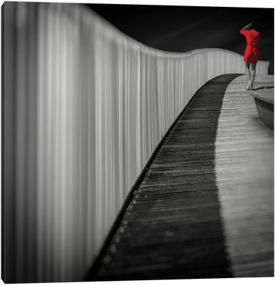 Woman In Red Canvas Print #OXM1745