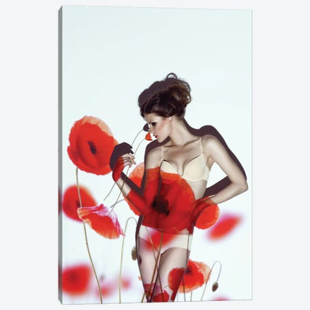 Red Canvas Print #OXM1751} by marinastudio Canvas Artwork