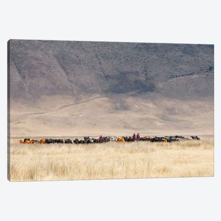 Incredible Maasai Canvas Print #OXM1780} by Mathilde Guillemot Canvas Art Print
