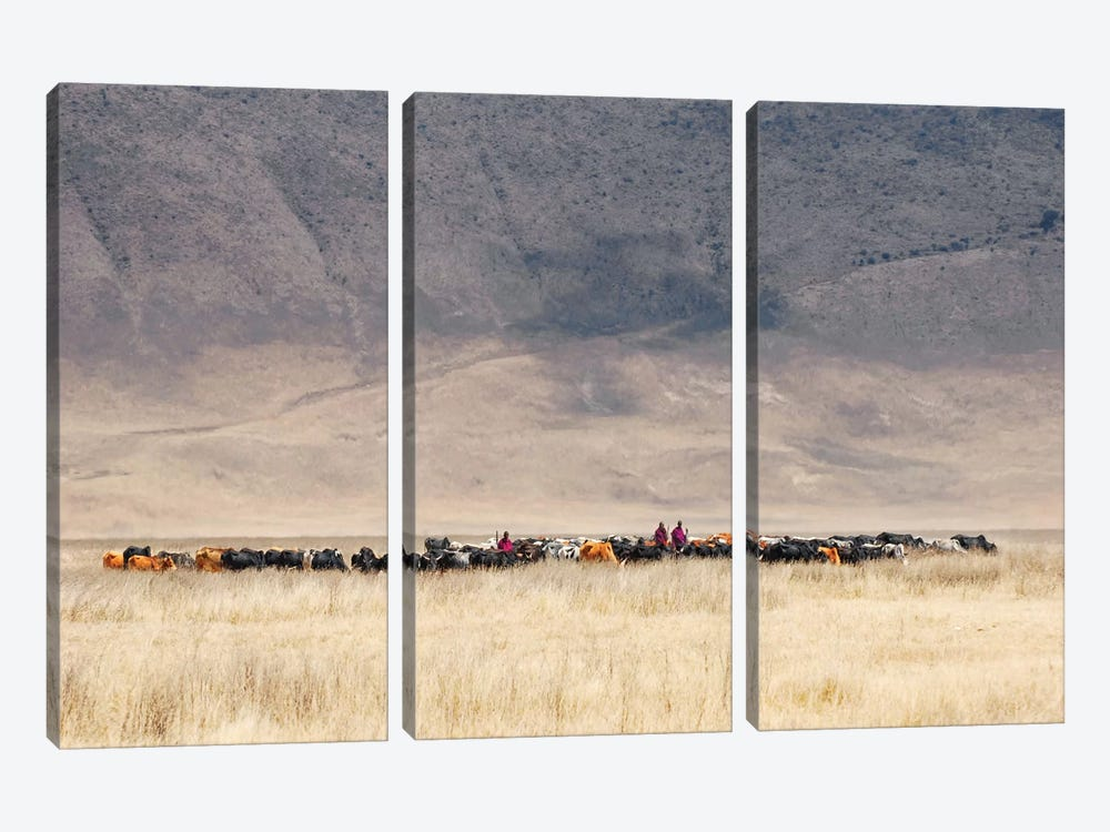Incredible Maasai 3-piece Canvas Artwork