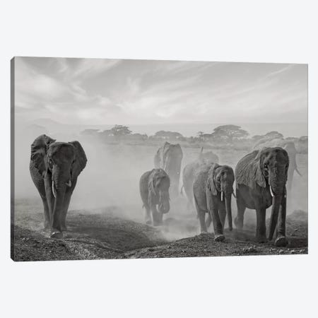 Sequence Of Emotion Canvas Print #OXM1782} by Mathilde Guillemot Canvas Print