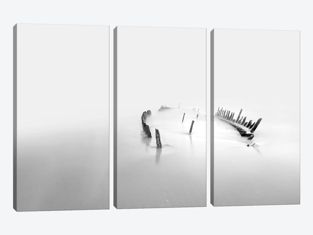 Into The Mist 3-piece Canvas Wall Art