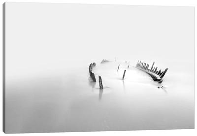 Into The Mist Canvas Art Print