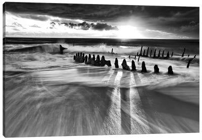 Sunlight Canvas Print #OXM1794
