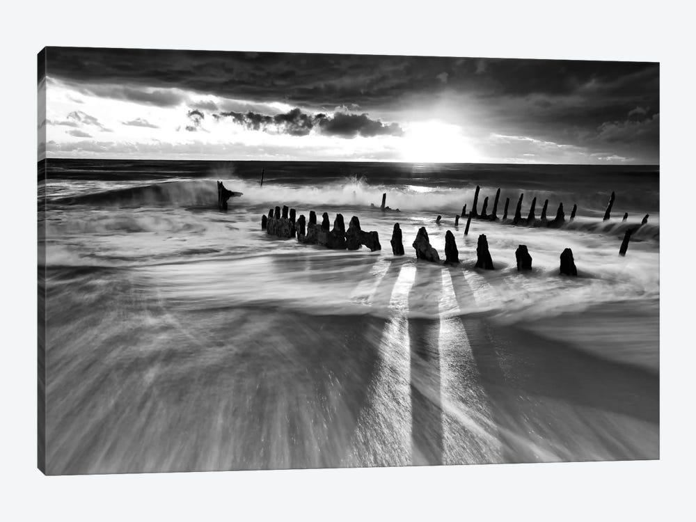 Sunlight by Mel Brackstone 1-piece Canvas Print