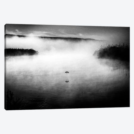 Untitled Canvas Print #OXM1817} by Miki Meir Levi Canvas Art