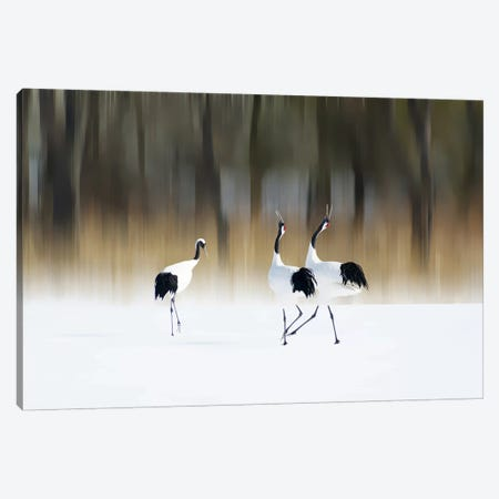 Sing A Song Of Love Canvas Print #OXM181} by Ikuo Iga Canvas Print