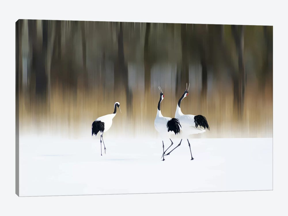 Sing A Song Of Love by Ikuo Iga 1-piece Canvas Art Print