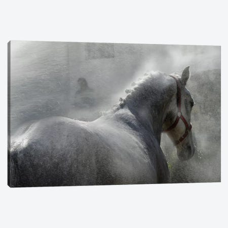 Gramy Canvas Print #OXM1823} by Milan Malovrh Canvas Wall Art